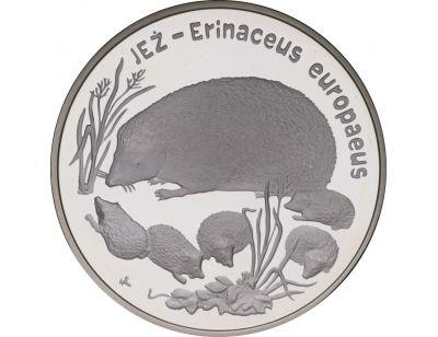 20 zł – Jeż (łac. Erinaceus europaeus)