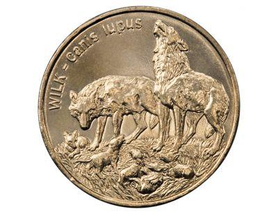 2 zł – Wilk (łac. Canis lupus)
