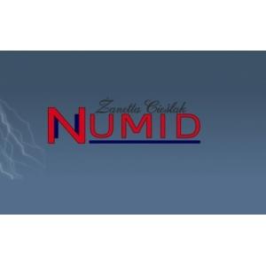 Numizmatyka - NUMID